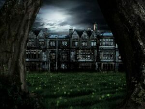 Crazy House Series